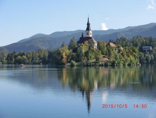ブレッド湖面に美し映えるブレッド島