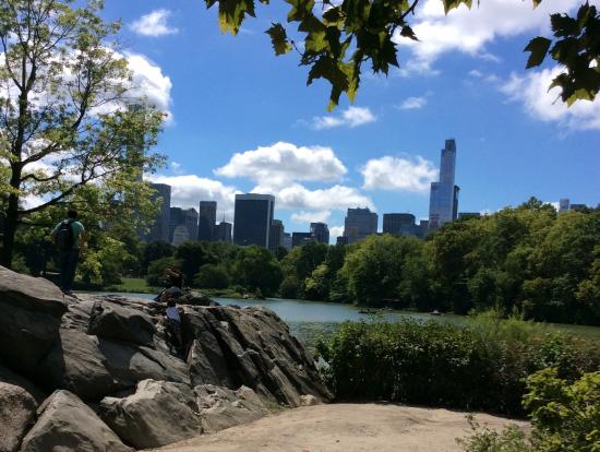 園内ところどころに見える岩とビル