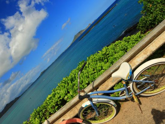 サイクリング途中の道でパシャり。
