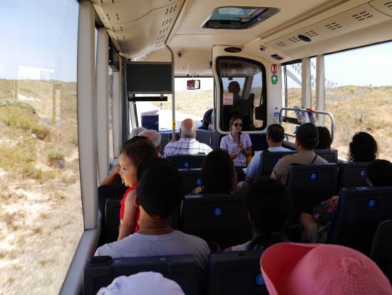 バスとガイドさん