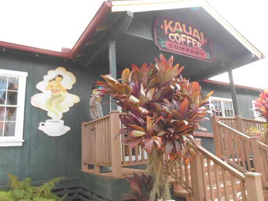 カウアイコーヒー農園