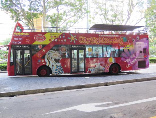 オープントップ周遊バス