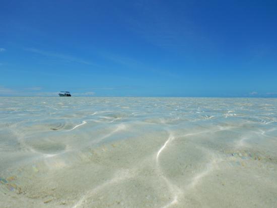 島の近くにボートを停めて、そこから浅瀬を歩いて上陸します。