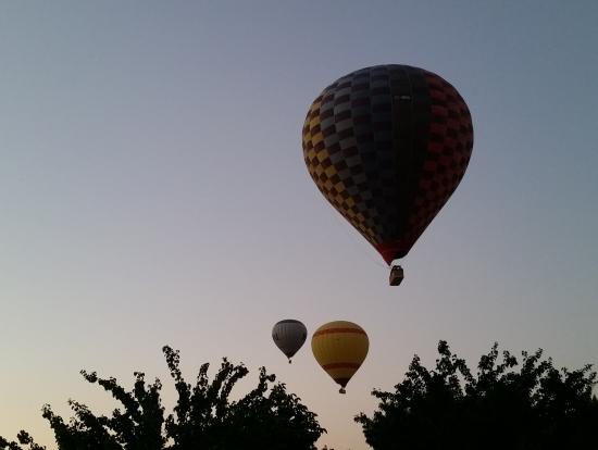 順番に飛び立つ気球。木々の間から生えてきたみたい。