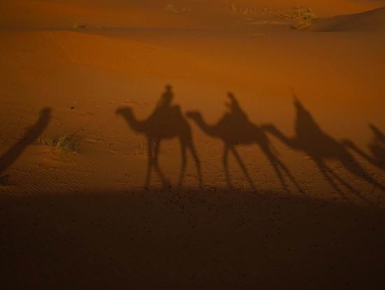 砂漠ツアー 夕日を背にラクダで1~2時間ほどキャンプ地を目指す。