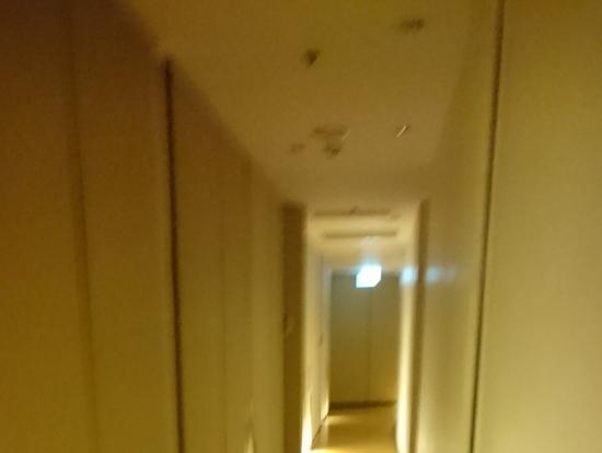 この廊下を通って施術室へ。