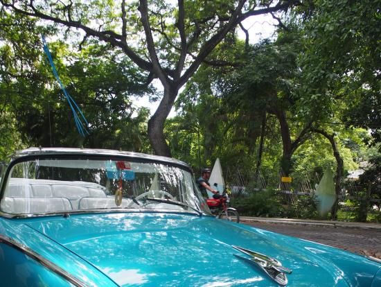 当日乗ったクラシックカー。