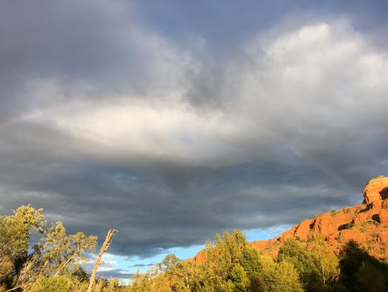 雨の後の虹