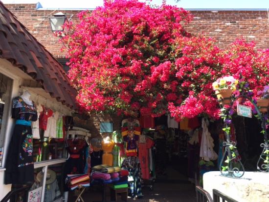 メキシコのショップが立ち並ぶエリアでショッピング