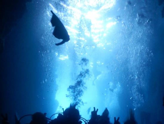 青の洞窟にて〜♡