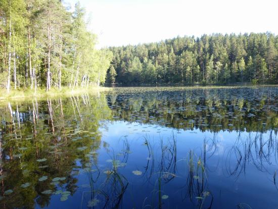最終地の前にも、このような綺麗な湖を見ることができます。