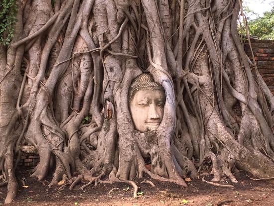 「ワット・マハタート」の仏像