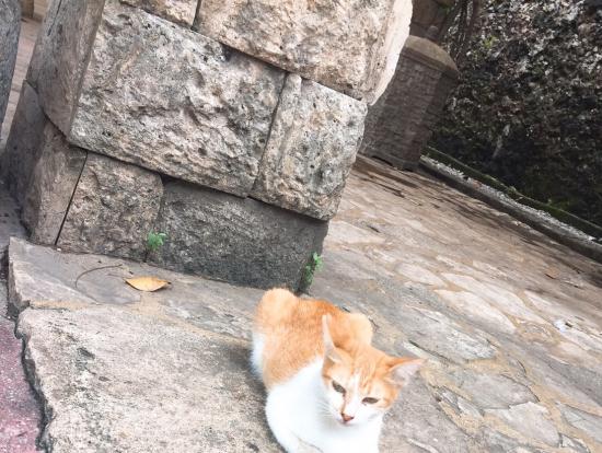 サン・ペドロ要塞には のんびり広い空と歴史が
