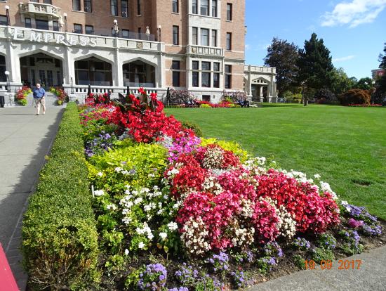 フェアモントエンプレスホテルのお花もキレイです。
