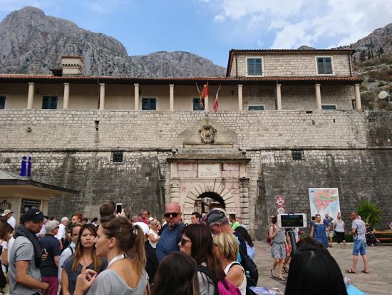 コトルは周囲の山々も城壁で囲まれています。歩いてみたかった。