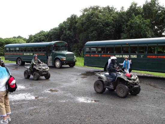 バギーとロケ地ツアーのバス