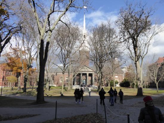 ハーバード大学キャンパス内