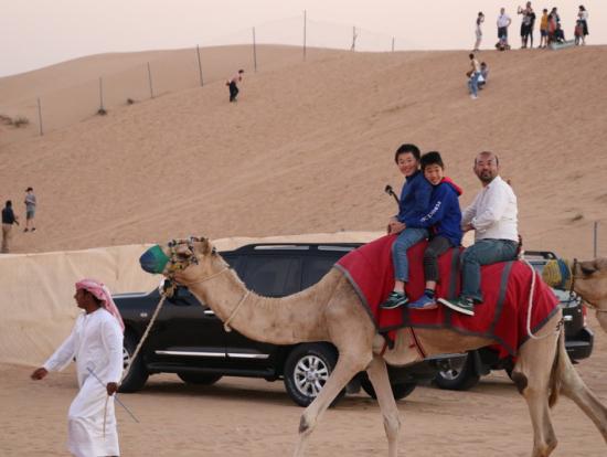 駱駝乗りは一周回る程度ですが、楽しかった