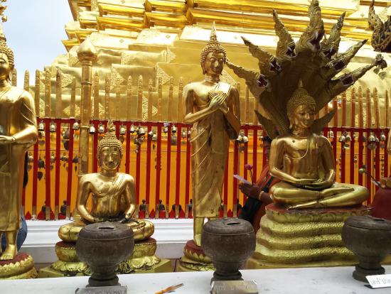 生まれた曜日別に仏像が決まってます!(ガイドさんと同じ水曜でした)