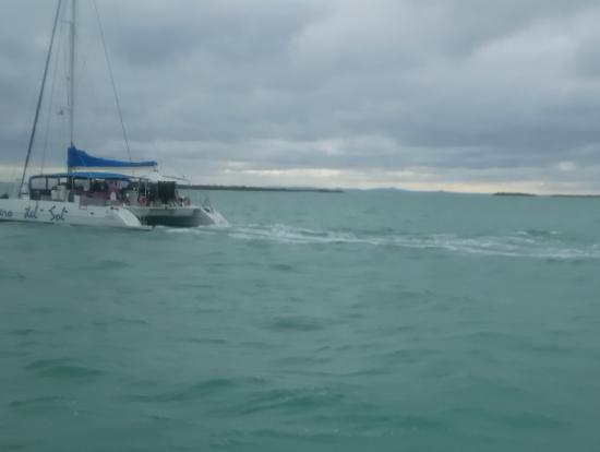 カタマラン船 天気は悪かったのですが、かなりの数出航していました。