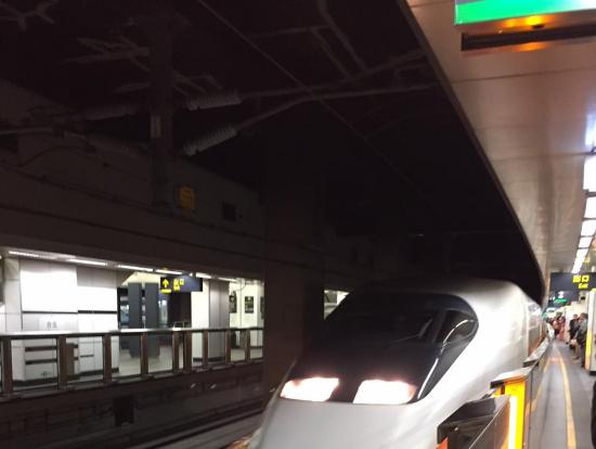 日本の「のぞみ型」車両ですね。