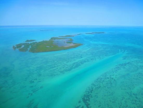 サンゴ礁の中に現れた『川』