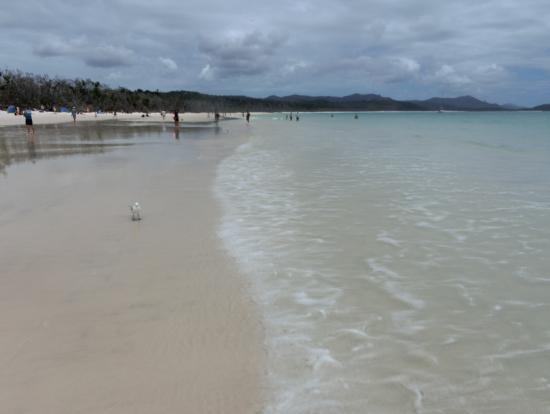 砂浜はベリーグッド