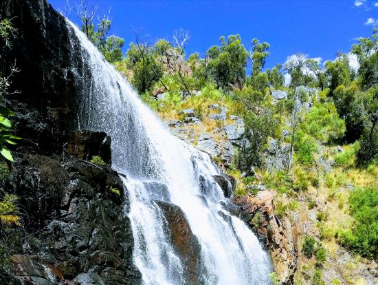 マッケンジー滝、美しい!
