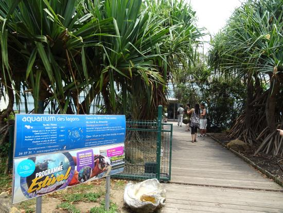 水族館入口です