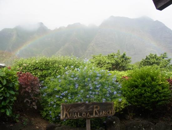 雨が多いこの地域では虹も多いかも