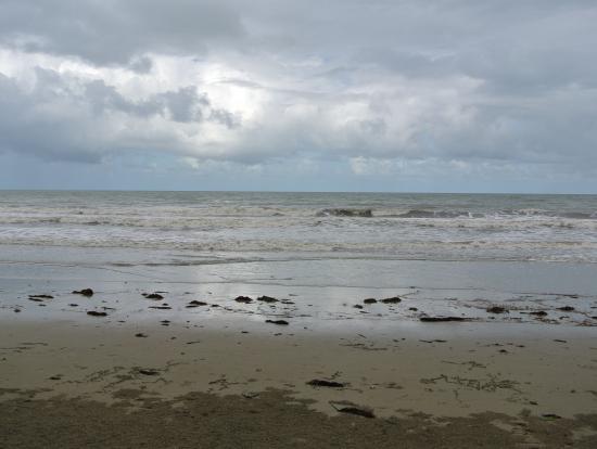 シェラトンのプールを抜けた先にあるビーチ、カニが開けた穴がたくさんありました