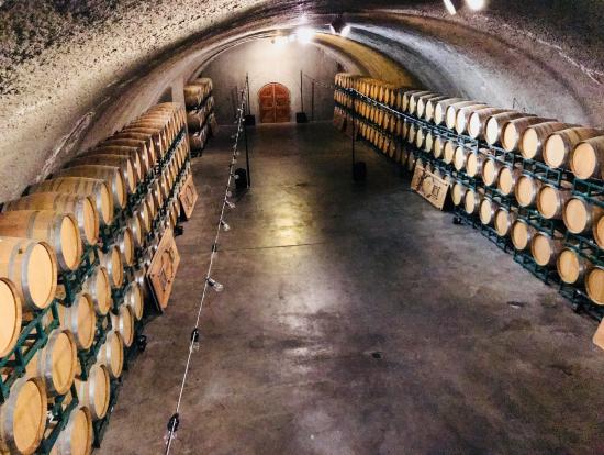 ワインの保管、管理についても学べます。