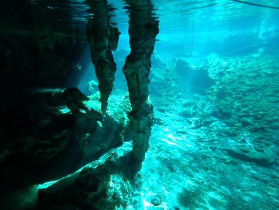 独特な地形の水中世界