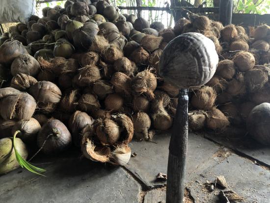 ココナッツの剥き方説明