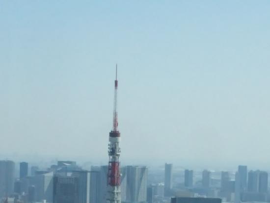 六本木ヒルズから見た東京タワー
