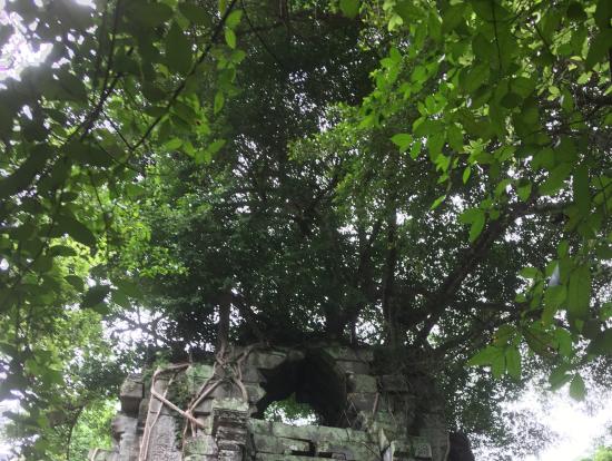 神秘的な寺院でした!!
