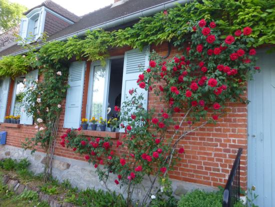 ジェルブロワ村 赤バラの壁