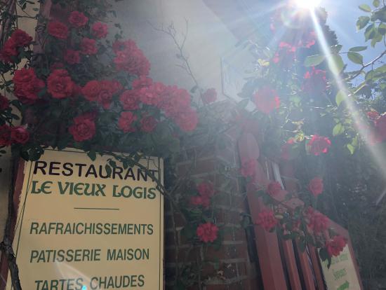 ジェルブロワ薔薇祭り