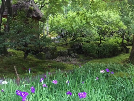 しょうざんリゾートの日本庭園