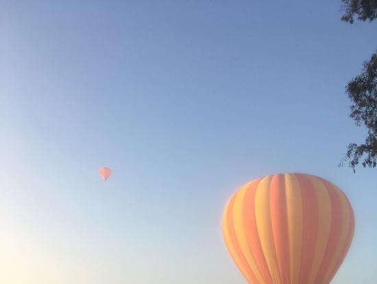 念願の熱気球を間近で!
