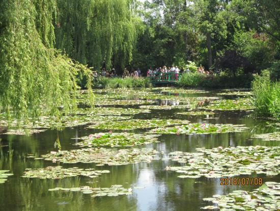 睡蓮の咲く、モネの池