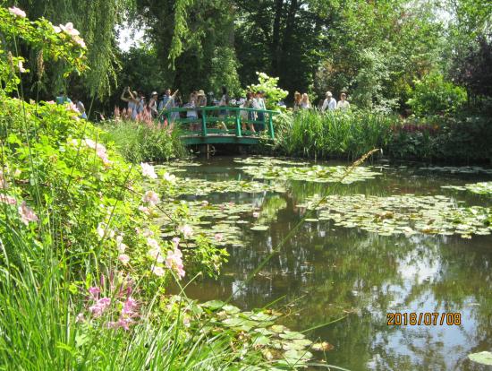 モネの愛した池