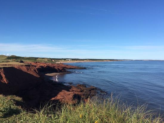 赤土の海岸線