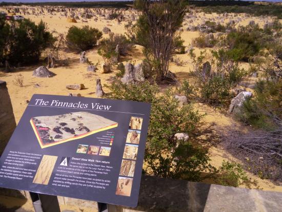 ピナクルズはこんなに広く、岩もたくさんあるのです♪