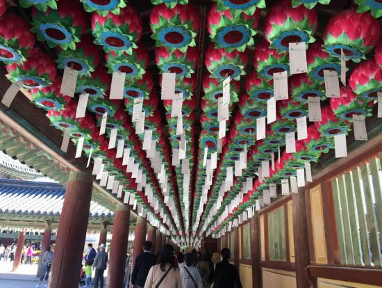 仏国寺の提灯