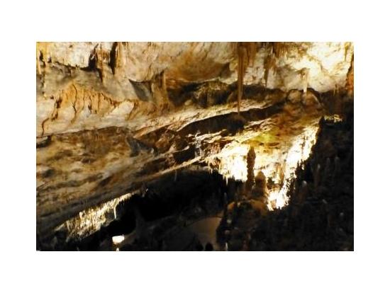 ポストイナ鍾乳洞内部