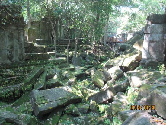 苔に覆われた遺跡