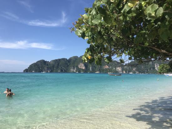 ピピ島綺麗でした。