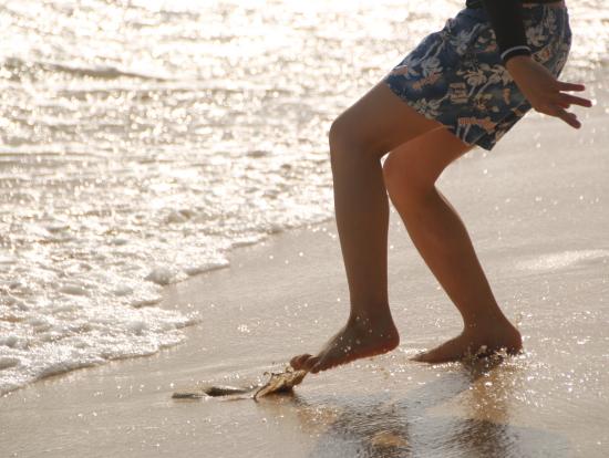 全米1になったビーチで写真撮影。
