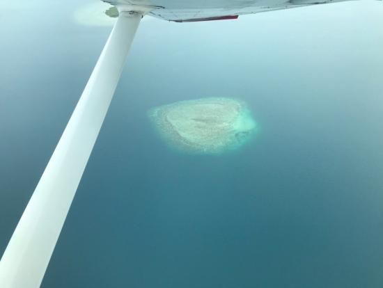 ハート?のサンゴ礁